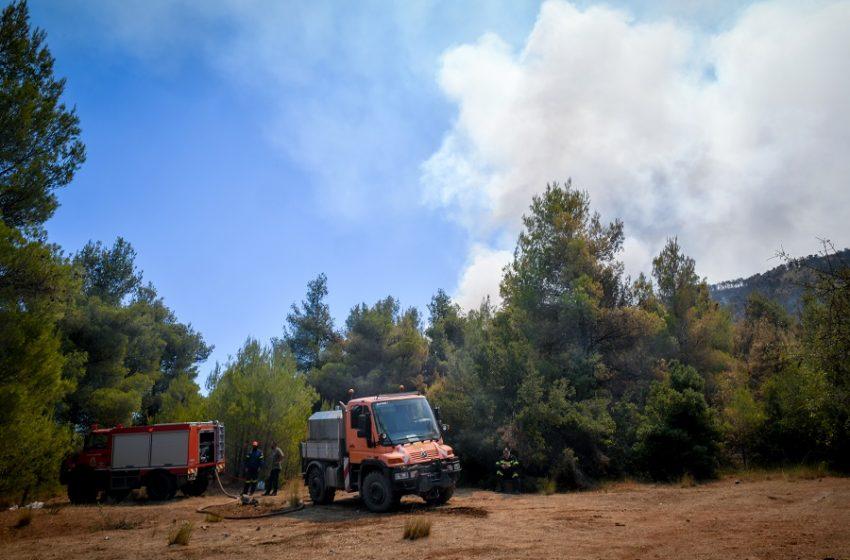 Νέα φωτιά κοντά στα Βίλια – Ξέσπασε στην περιοχή Κάζα