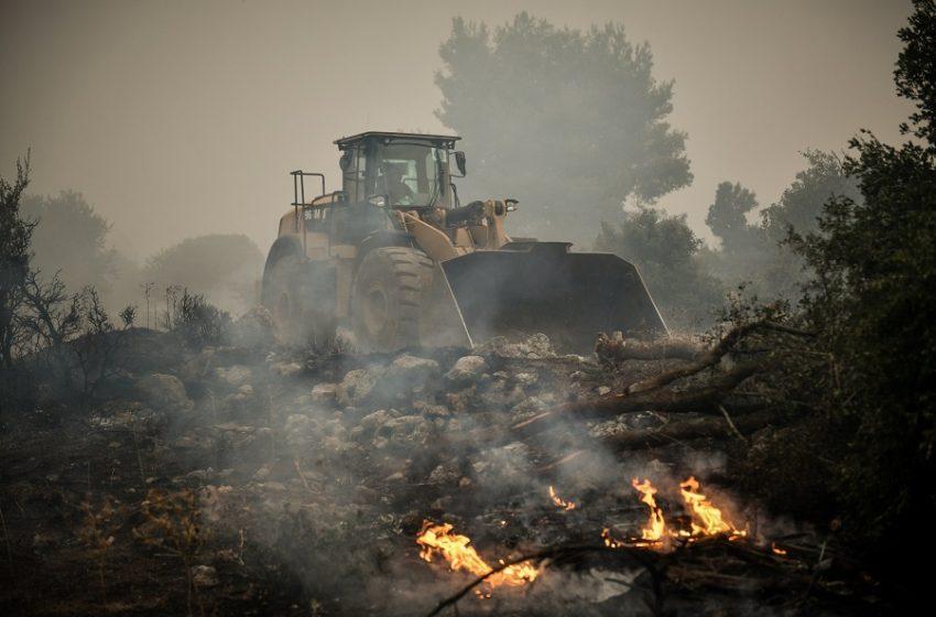 """Φωτιά στα Βίλια: Τέταρτη μέρα """"κόλασης"""" – Αυξάνεται η ένταση των ανέμων, εκκενώνονται οικισμοί – Για ανικανότητα μιλά ο πρόεδρος της Κοινότητας"""