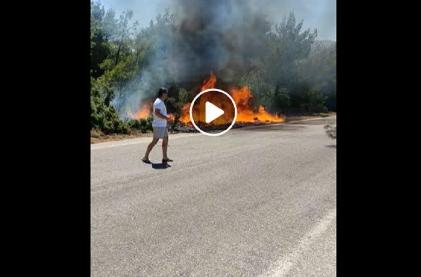 "Bίντεο ντοκουμέντο: Έτσι ξεκίνησε η φωτιά στα Βίλια – ""Θα μπορούσε να σβήσει σε 20 λεπτά"" (vid)"