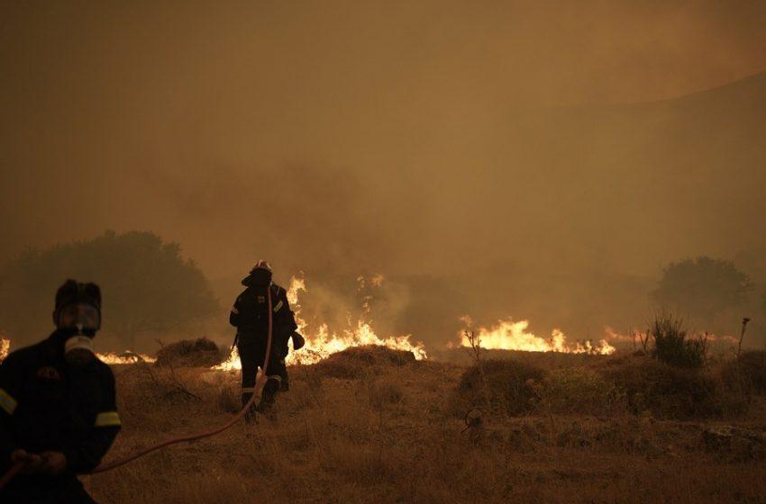 Εφιαλτική πρόβλεψη για τη φωτιά στα Βίλια – Ενισχύονται οι άνεμοι έως 7 μποφόρ (vid)