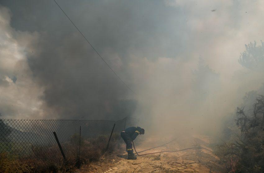Φωτιά στο Μαρκόπουλο Ηλείας