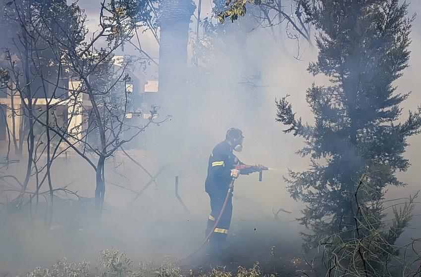 Φωτιά σε Πάρνηθα και Κάλαμο: Υπό μερικό έλεγχο τα μέτωπα της πυρκαγιάς