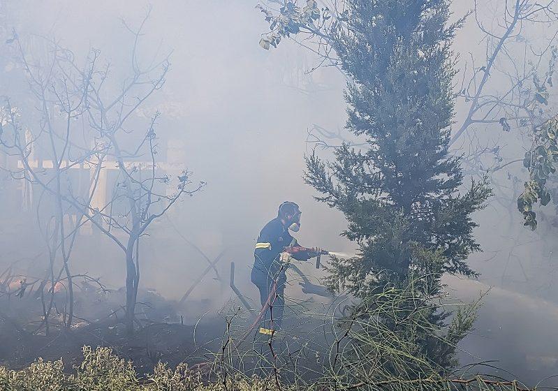 Φωτιά στον Έβρο, κοντά στο Πεδίο Βολής -Ισχυρές πυροσβεστικές δυνάμεις στο σημείο