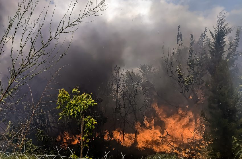 Ξέσπασε φωτιά στην Πάρνηθα: Μεγάλη κινητοποίηση της Πυροσβεστικής, επιχειρούν και εναέρια μέσα