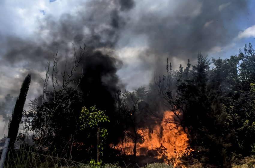 Φωτιά στη Μεγαλόπολη Αρκαδίας – Μήνυμα από το 112