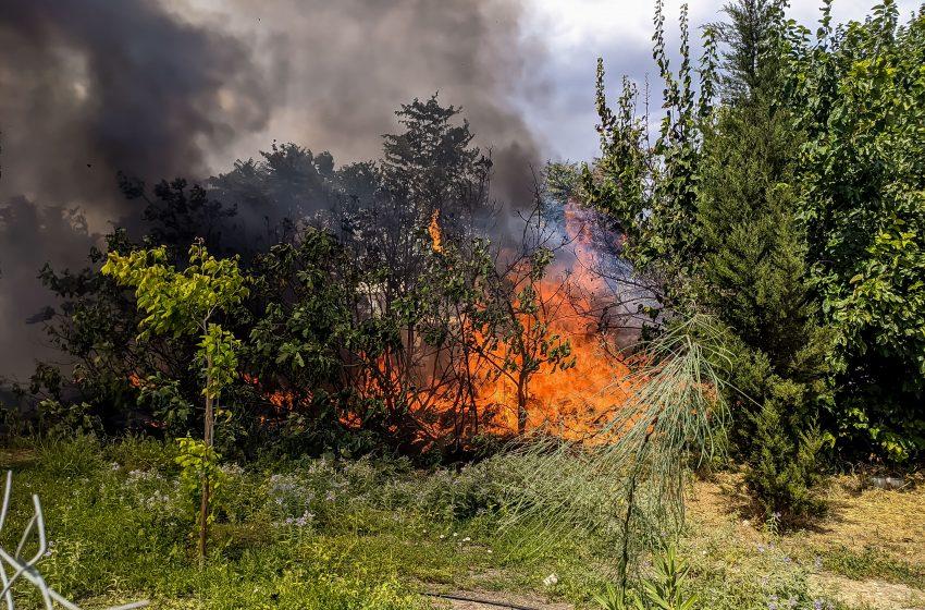 Φωτιά στους πρόποδες της Πάρνηθας, στην περιοχή Ντάρδιζα