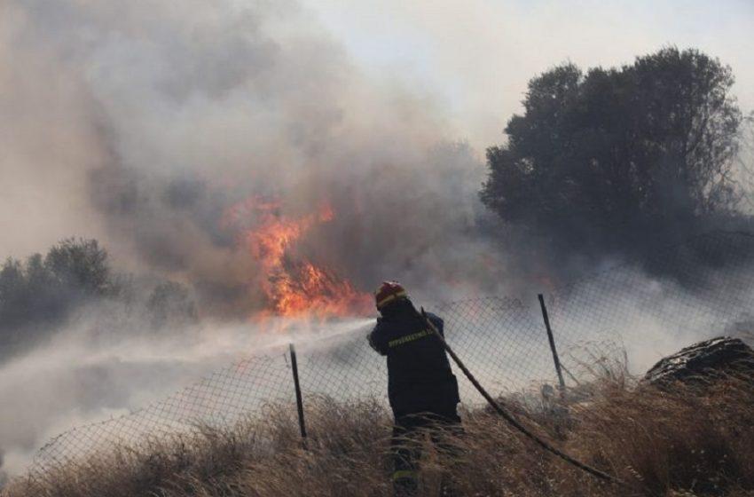 Φωτιά στο Κιλκίς – Μαίνεται το μέτωπο – Ενισχύθηκαν οι δυνάμεις της πυροσβεστικής