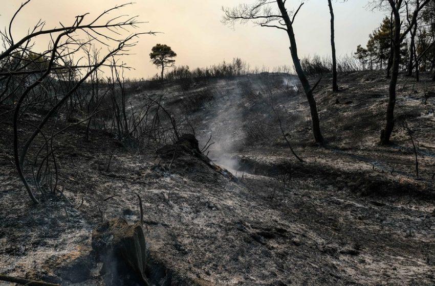 Μαρουσάκης: Δεύτερο κύμα, προσοχή στη βόρεια Εύβοια (vid)