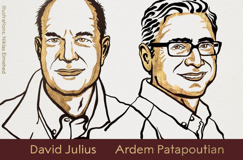 Νόμπελ ιατρικής στους Ντέιβιντ Τζούλιους και Αρντέμ Παταπουτιάν