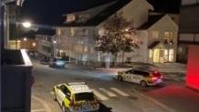 Νορβηγία: Αναφορές για νεκρούς σε επίθεση με τόξο και βέλη (Vid)