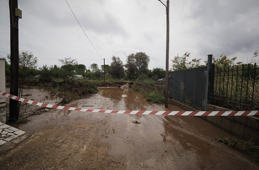 Αθωράκιστη η πυρόπληκτη Εύβοια παραδόθηκε στις πλημμύρες – Σφοδρή κριτική από επιστήμονες, ομαδικά πυρά της αντιπολίτευσης στην κυβέρνηση (εικόνες, vid)